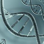 Protein Key to Mesothelioma Prognosis
